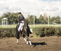 Rostov on don russia september beautiful rider on a horse stands in in Royalty Free Stock Photography