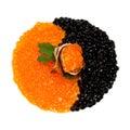 Roter und schwarzer Kaviar Stockfoto