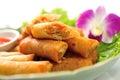 Rotoli di fried chinese traditional spring Fotografia Stock Libera da Diritti