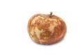Rotten apple on a white background Royalty Free Stock Photos