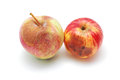 Rotten apples two on white Royalty Free Stock Image