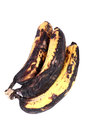Rotten bananas beautiful shot of white background Stock Image