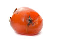 Rotten persimmon isolated white background Royalty Free Stock Photos