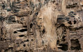 Rotten wood damage by termites background texture Royalty Free Stock Photos