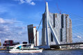 Rotterdam city downtown of river view erasmus bridge dutch erasmusbrug office and apartment skyscrapers in south holland the Royalty Free Stock Photos