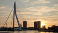 Rotterdam landscape Royalty Free Stock Photo