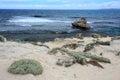 Rottnest Island, Western Australia Royalty Free Stock Photos
