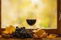 Rotwein des herbstes Stockfotos