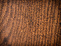 Rough background wood texture abstract Royalty Free Stock Photo