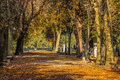 Rough path in the city park rome Royalty Free Stock Photos