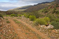 Rough road in the Nama Karoo shrubland Stock Images