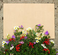 Rough sheet of paper and flowers on the pavement blank Royalty Free Stock Photography