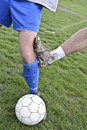 Rough soccer play roughly played close up of one player dangerously kicks opponent players knee Royalty Free Stock Photo