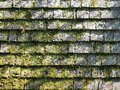 Rough weathered timber roof shingles overgrown with moss Royalty Free Stock Photo
