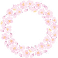 Round backround with apple blossom pink Stock Image