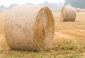Round bales of straw on a stubble field in the morning mist Stock Photo