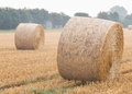Round bales of straw on a stubble field in the morning mist Stock Image