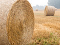 Round bales of straw on a stubble field in the morning mist Royalty Free Stock Image
