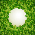 Round banner, green leaves background, vector illustration Royalty Free Stock Photo
