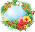 Round banner from tropical flowers and leaves Stock Photography
