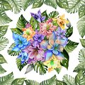 Round bunch of columbine flowers or aquilegia in square frame made of exotic monstera leaves on white background.