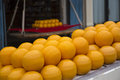 Round cheese edam holland cheese in the market Royalty Free Stock Images