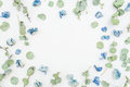 Round frame of blue flowers and eucalyptus on white background, Flat lay, Top view. Floral pattern.