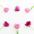 Round frame with pink tulip flowers on white background. Flat lay. Top view. Valentines Day background.