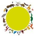 Round frame. Sloth anteater toucan lama bat seal