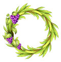 A round frame with vine grapes illustration of on white background Stock Photos
