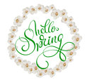 Round frame of white flowers isolated on background and text Hello Spring. Calligraphy lettering