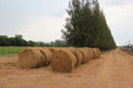 Round Hay Bales in the Meadow Royalty Free Stock Photo