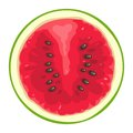 Round slice of watermelon on white background. Flat color illustration