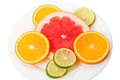 Round slices of citrus fruit Stock Photography
