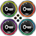 Round vector button with skeleton key icon Stock Photography