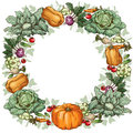 Round vegetable frame with various vegetables Stock Photos