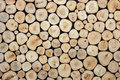 Round wood log texture can use for background. Interior decoration Royalty Free Stock Photo