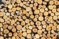 Round wood pile Royalty Free Stock Photo