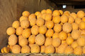Round yellow Uzbek melons are in the truck Royalty Free Stock Photo