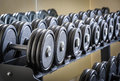 Row of barbells Royalty Free Stock Photos