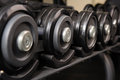 Row of barbells black in the rack ready for workout Stock Images