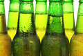 Row of beer bottles green Stock Photos