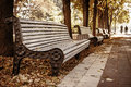 The row of benches in autumn park perspective while fall with walking people background Royalty Free Stock Photos