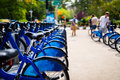 Row of bikes for rent in the city blue Royalty Free Stock Photos