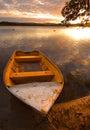 Row-boat und Pelikane Stockfoto