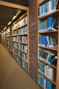 Row of bookshelves filled with books in a library Royalty Free Stock Images