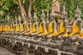 Row of buddhas with yellow clothes in a temple in ayutthaya the ancient capital of thailand Royalty Free Stock Photo