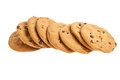 Row of chocolate chip cookies Royalty Free Stock Images