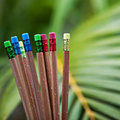 Row of color pencils on green bush background art Royalty Free Stock Image