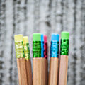 Row of color pencils on grey background studio Stock Image